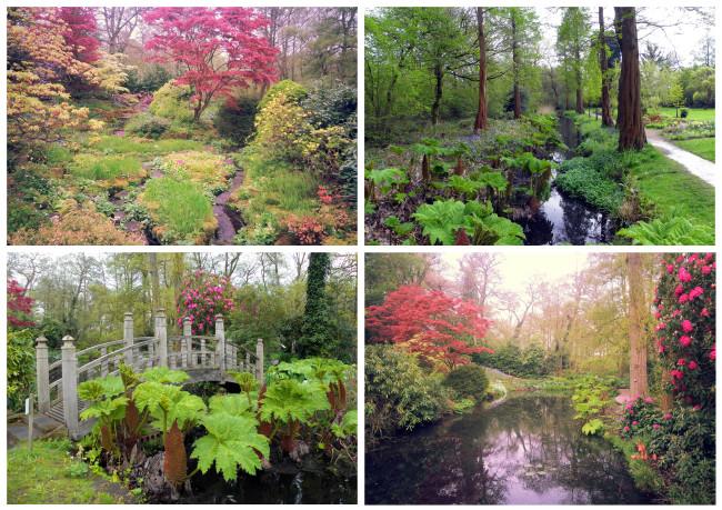 Winterbourne- Woodland area
