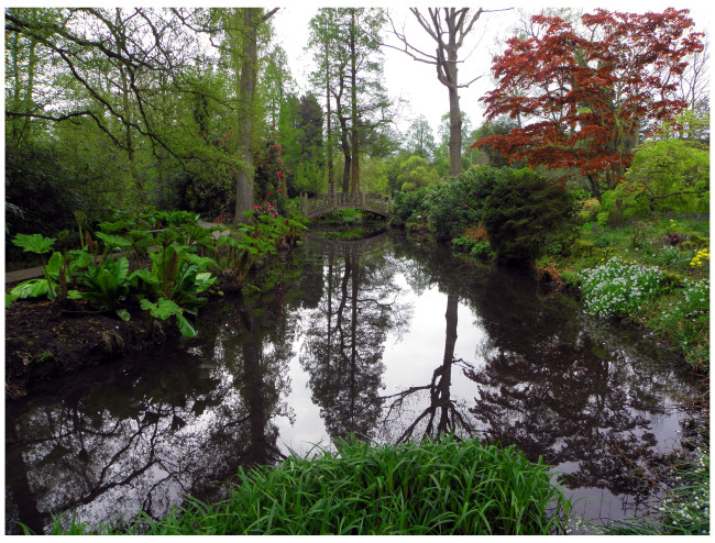 Winterbourne- reflections