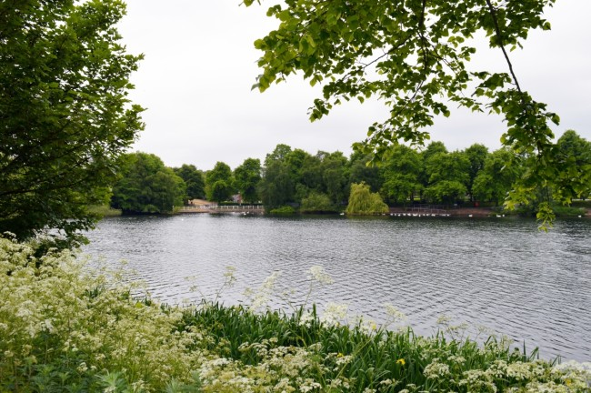 Optimized-Brookvale Park Lake 2